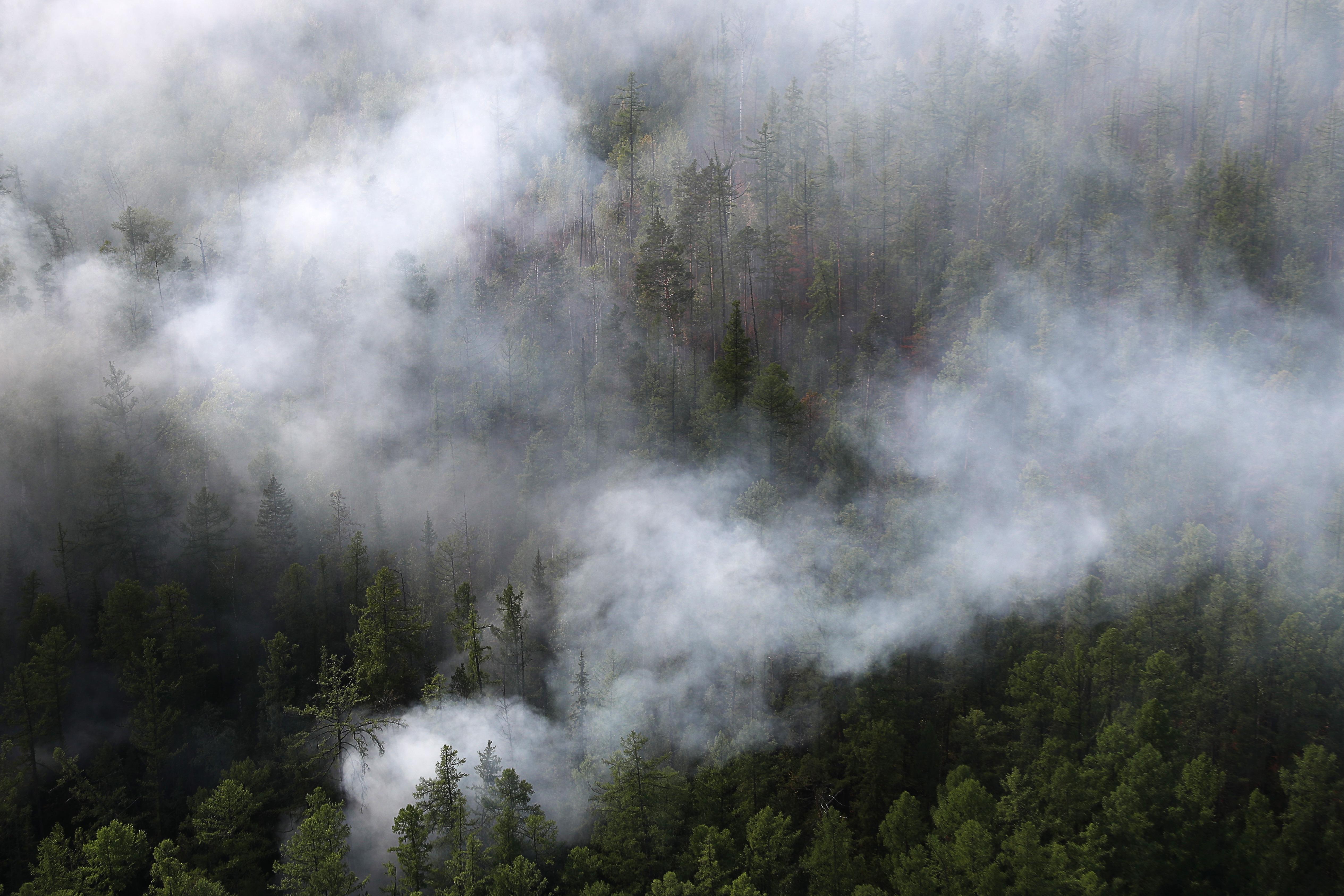 В горах Кабардино-Балкарии зажегся лес